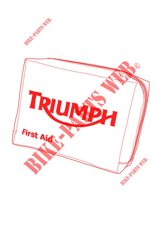 FIRST AID KIT DIN 13167 for Triumph TRIDENT